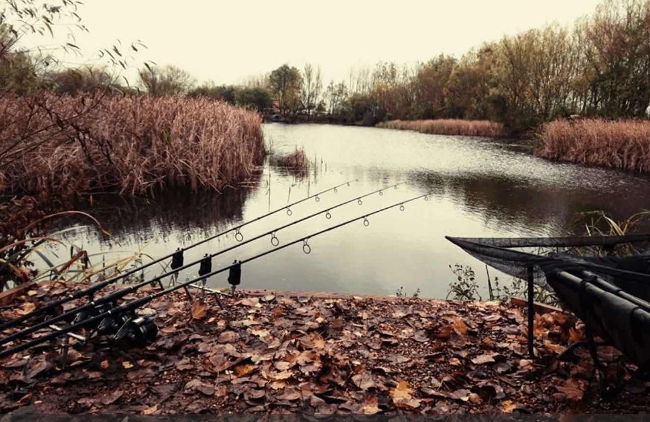 Sapphire Lakes Rods